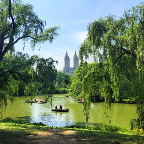SPEND A DAY IN THE EVER-ENCHANTING CENTRAL PARK